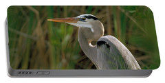 Portable Battery Charger featuring the photograph Great Blue Heron by Doug Herr