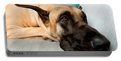 Great Dane Dog On Sofa Portable Battery Charger by Lanjee Chee