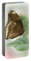 Great Eggfly Butterfly Portable Battery Charger by Judy Whitton