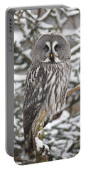 Great Gray Owl In A Tree Germany Portable Battery Charger
