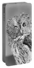 Great Gray Owl Strix Nebulosa Staring Portable Battery Charger