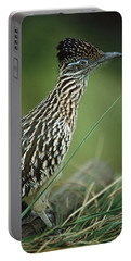 Greater Roadrunner Portrait Portable Battery Charger