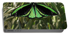 Portable Battery Charger featuring the photograph Green Butterfly by Brenda Brown