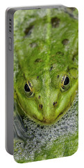 Green Frog Portable Battery Charger