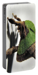 Green Hair Moth Portable Battery Charger