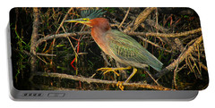 Green Heron Basking In Sunlight Portable Battery Charger