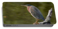 Portable Battery Charger featuring the photograph Green Heron by Doug Herr