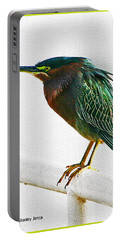 Green Heron In Scottsdale Portable Battery Charger