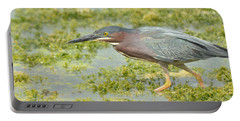 Green Heron On The Hunt Portable Battery Charger