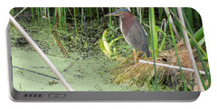 Portable Battery Charger featuring the pyrography Green Heron by Ron Davidson