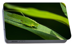 Green Katydid Portable Battery Charger by Christina Rollo