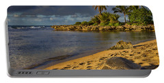 Green Sea Turtle At Sunset Portable Battery Charger by Douglas Barnard