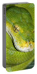 Portable Battery Charger featuring the photograph Green Tree Python #2 by Judy Whitton
