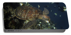Portable Battery Charger featuring the photograph Hawksbill Turtle by Sergey Lukashin