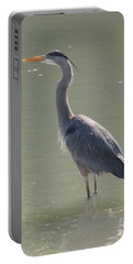 Portable Battery Charger featuring the photograph Grey Bird by Oksana Semenchenko