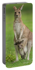 Grey Kangaroo And Joey  Portable Battery Charger