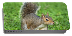 Portable Battery Charger featuring the photograph Grey Squirrel by Antonio Scarpi