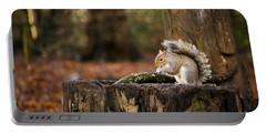 Grey Squirrel On A Stump Portable Battery Charger by Spikey Mouse Photography