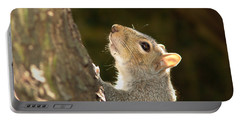 Portable Battery Charger featuring the digital art Grey Squirrel by Ron Harpham