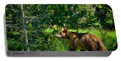 Portable Battery Charger featuring the photograph Grizzly Bear 760 by Greg Norrell