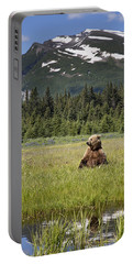 Grizzly Bear In Meadow Lake Clark Np Portable Battery Charger