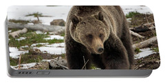 Portable Battery Charger featuring the photograph Grizzly Bear In Spring by Jack Bell
