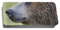 Grizzly Bear Lake Clark Np Alaska Portable Battery Charger