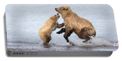 Grizzly Bear Mother Playing Portable Battery Charger