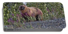 Grizzly Portable Battery Charger by David Gleeson