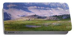 Portable Battery Charger featuring the photograph Grizzly Meadows by Marianne NANA Betts