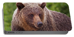 Portable Battery Charger featuring the photograph Grizzly Portrait by Stanza Widen