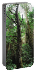 Groovin With The Redwoods Portable Battery Charger