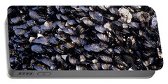 Group Of Mussels Close Up Portable Battery Charger