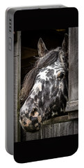 Guard Horse-what's The Password? Portable Battery Charger
