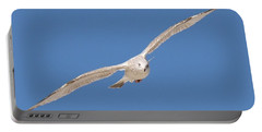 Gull In Flight  Portable Battery Charger