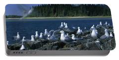 Gulls, Duck Lake, Manitoba, Canada Portable Battery Charger