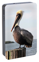 Handsome Brown Pelican Portable Battery Charger by Carol Groenen