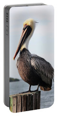 Handsome Brown Pelican Portable Battery Charger