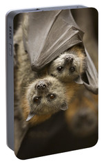 Bat Portable Battery Chargers