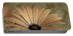 Happy To Be A Raindrop Portable Battery Charger by Trish Tritz