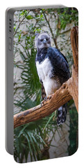 Harpy Eagle Portable Battery Charger