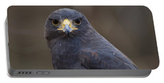Harris Hawk Portable Battery Charger by Chris Flees