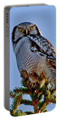 Hawk Owl Square Portable Battery Charger
