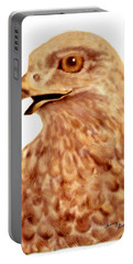 Hawk Portable Battery Charger by Terry Frederick