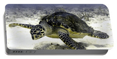 Hawksbill Caribbean Sea Turtle Portable Battery Charger