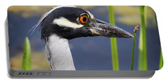 head shot - Yellow crowned Night Heron Portable Battery Charger