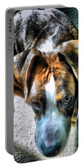 Portable Battery Charger featuring the photograph Here's Lookin Atchya by Robert McCubbin