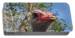 Ostrich Here's Looking At You Portable Battery Charger by Belinda Lee