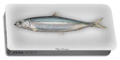 Herring  Clupea Harengus - Hareng - Arenque - Silakka - Aringa - Seafood Art Portable Battery Charger