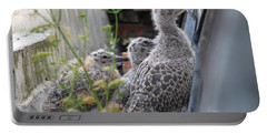 Herring Gull Chicks Portable Battery Charger